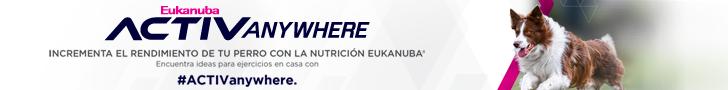 Eukanuba 2021